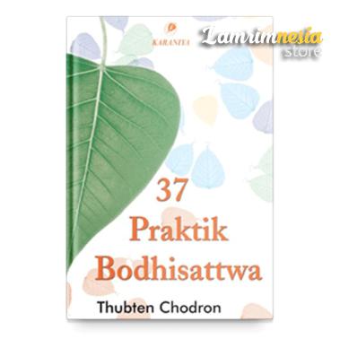 37-praktik-bodhisattwa-600×443